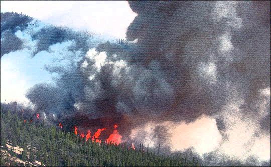 deercreek_fire_nps copy